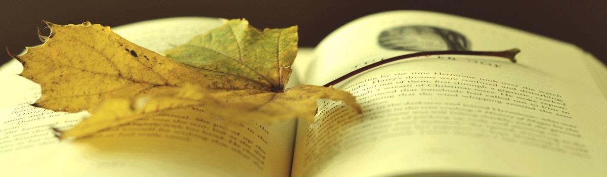 Un libro è un giardino che puoi custodire in tasca. (Proverbio arabo)