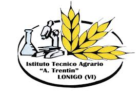 itas trentin logo